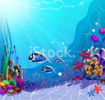 Underwater,Tropical Climate...