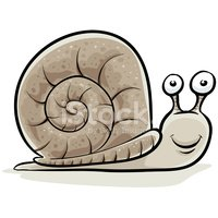 Snail,Cartoon,Animal,Insect...