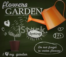 Watering Can,Vector,Ilustra...