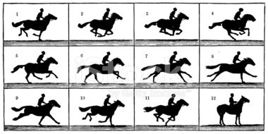 File:Running horse moving illusion.png - Wikimedia Commons