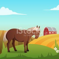 Barn,Backgrounds,Summer,Cow...