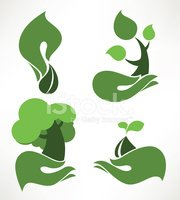 Tree,Growth,Plant,Seed,Shap...