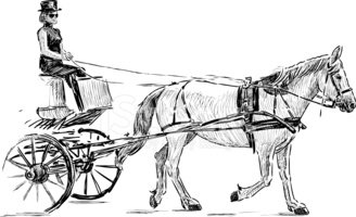Carriage,Horse,Driving,Ridi...