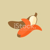 Sparse,Sign,Symbol,Vector,S...