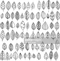 set of decorative abstract leaves