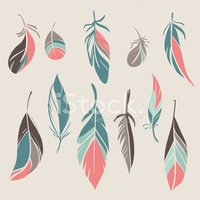 Feather,Vector,North Americ...
