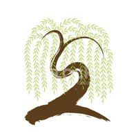 Willow Tree,Vector,Branch,T...
