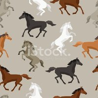 Pattern,Horse,Silhouette,An...