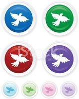 Dove - Bird,Hope,Symbol,Co...