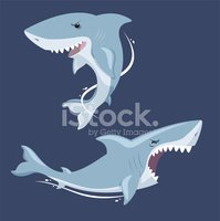 Shark,Biting,Animal,Underwa...
