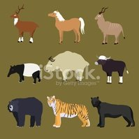 Tapir,Ox,Vector,Deer,Animal...