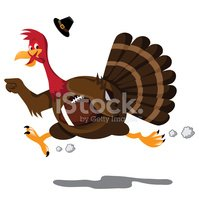 Running,Jogging,Turkey - Bi...