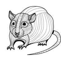 Mouse Tail Diagram