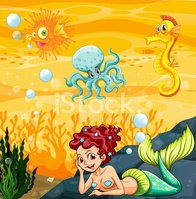 Reef,Sea Horse,Fossil,Plant...