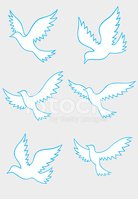 Bird,Symbol,Vector,Abstract...