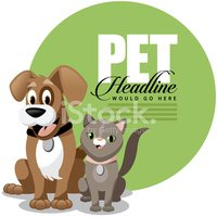Pets,Pet Collar,Domestic Ca...