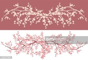 Nature,Plant,Pink Color,Whi...