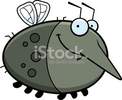 Mosquito,Insect,Pest,Smilin...