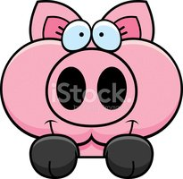 Pig,Small,Ilustration,Domes...