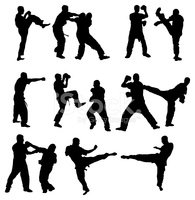 Martial Arts,Sport,Fighting...