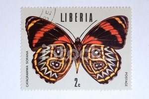Butterfly - Insect,Liberia,...