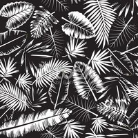 Palm Tree,Pattern,Textured ...