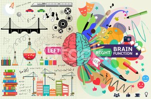 Left and right brain functions.