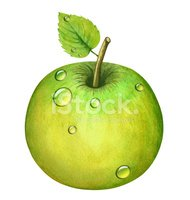 Watercolor green apple with leaf, water drops, dew