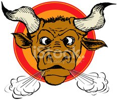 Bull - Animal,Blowing,Furio...