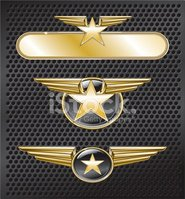 Artificial Wing,Insignia,Mi...