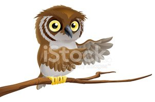 Beak,Clip Art,Animal Eye,Wi...