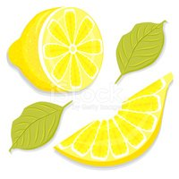 Citrus Fruit,Yellow,Half Fu...