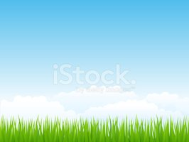 Sky,Grass,Blue,Cloudscape,C...