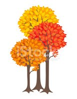 Autumn,Nature,Plant,Vector,...
