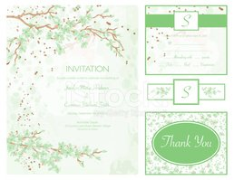 Wedding Invitation,Color Im...