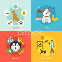 Pets,Infographic,Industry,D...