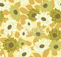 Blossom,Greeting Card,Summe...