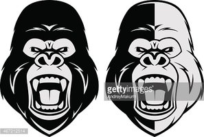 angry gorilla head drawing - photo #21