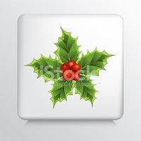 Square Icon With Holly Sprig Star and Red Berries