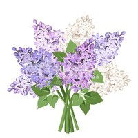 Scented,Gift,Flower,Plant,D...