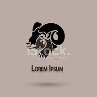 Brochure,Mouflon,Animal,For...