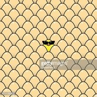 Yellow Chick Wearing Ladies Style Sunglasses amongst Brown Eggs