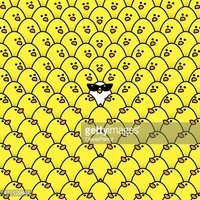 White Chick in Ladies Sunglasses Surrounded by Staring Yellow Ch
