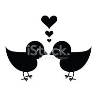 Bird,Silhouette,Kissing,You...