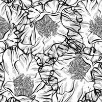 Monochrome seamless pattern with flowers. Hand-drawn floral back