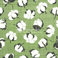 Seamless pattern with soft cotton buds. Vector floral background.