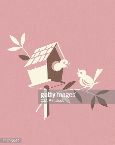 Birdhouse on Pink Background