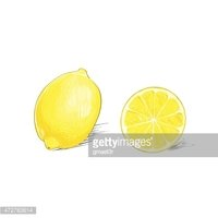 Lemon Half Cut Circle Citrus Fruit Color Sketch Draw