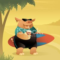 Pig,Surfing,Surf,Cartoon,Be...