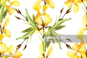 Iris, watercolor, can be used as greeting card